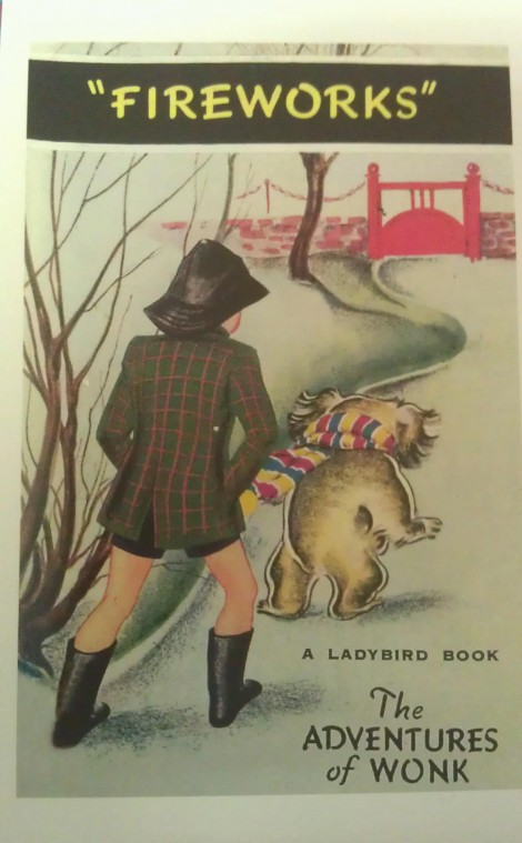 Ladybird book - Fireworks