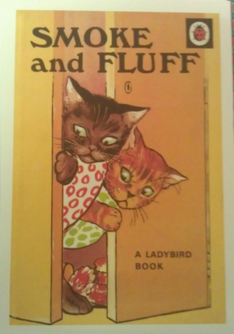 Ladybird book - Smoke And Fluff