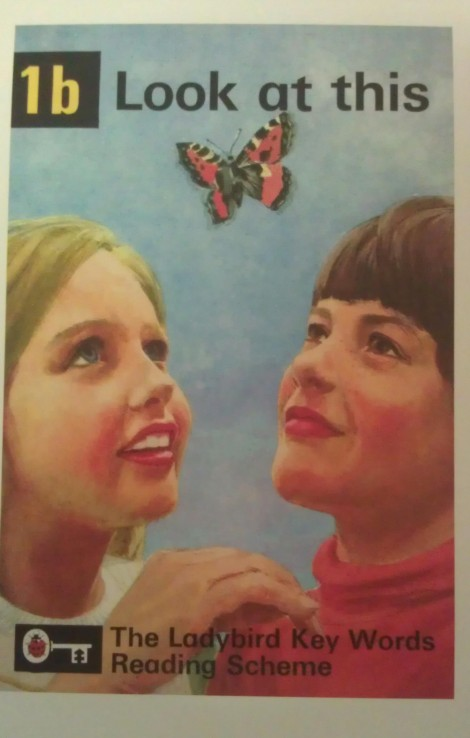 Ladybird book - Look at this