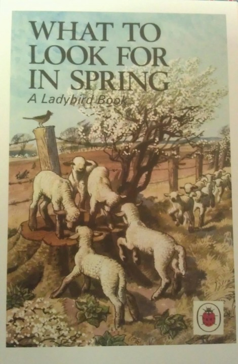 Ladybird book - What To Look For In Spring
