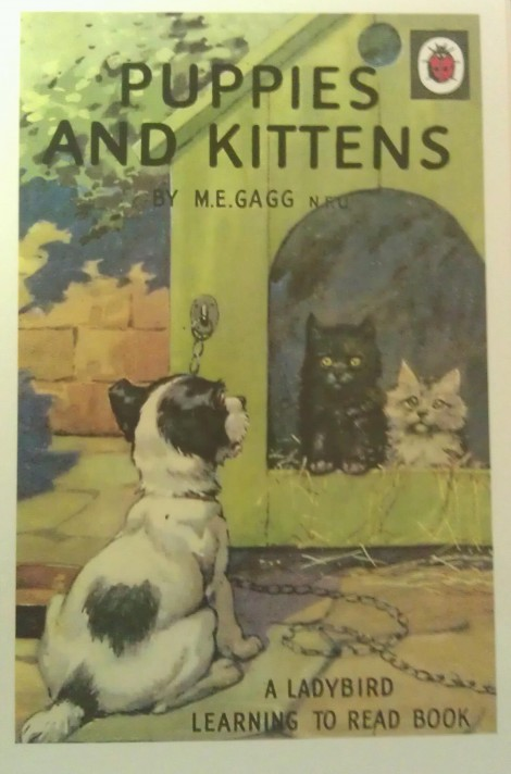 Ladybird book - Puppies And Kittens